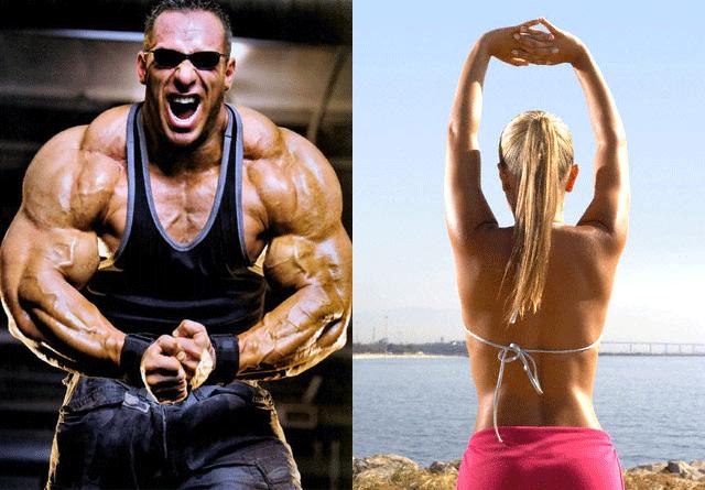 energy diet для набора мышечной массы
